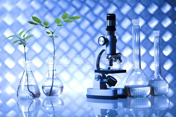 Biotechnologie chemische laboratorium glaswerk bio organisch Stockfoto © JanPietruszka