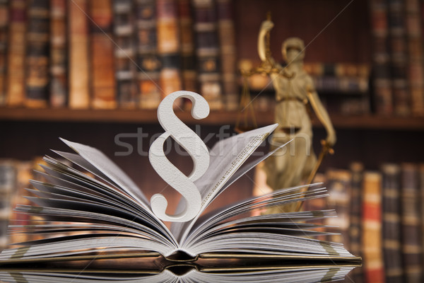 Paragraph and Law books, justice concept, Courtroom Stock photo © JanPietruszka