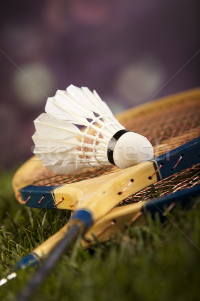 Shuttlecock on badminton racket Stock photo © JanPietruszka