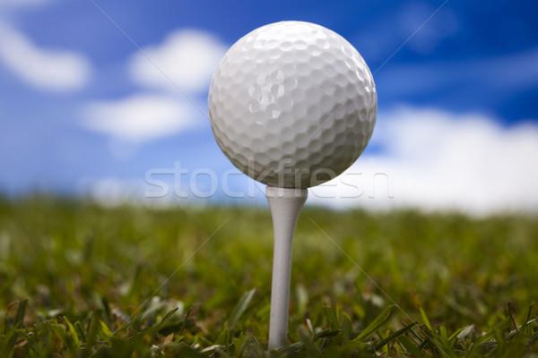 мяч для гольфа зеленый луговой закат газона жизни Сток-фото © JanPietruszka