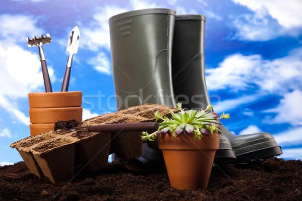 Kertészkedés idő kert élénk fényes tavasz Stock fotó © JanPietruszka
