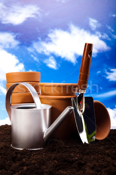 Gardening concept, work tools, plants Stock photo © JanPietruszka