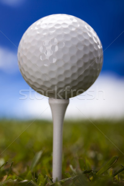 Stock photo: Golf ball on green meadow