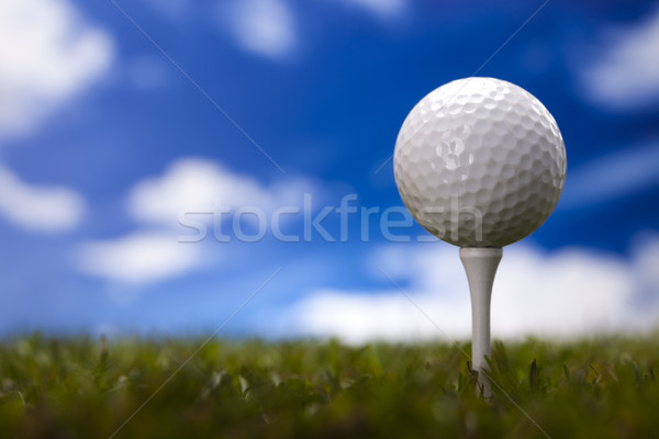 Golf topu yeşil çayır gün batımı çim yaşam tarzı Stok fotoğraf © JanPietruszka