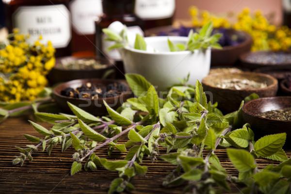 Natural remedy and mortar, natural colorful tone Stock photo © JanPietruszka