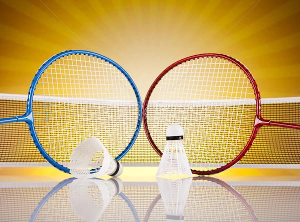 Badminton verão diversão pena bola Foto stock © JanPietruszka
