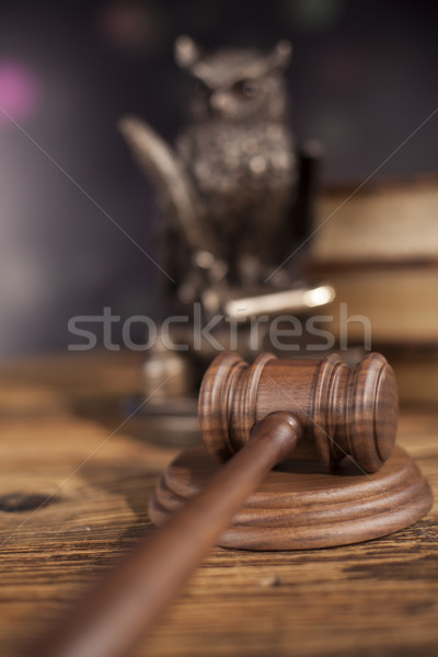 Law concept, owl in a judge gavel concept  Stock photo © JanPietruszka