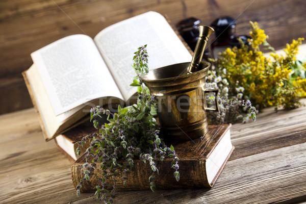 Természetes jóvátétel színes természet szépség gyógyszer Stock fotó © JanPietruszka