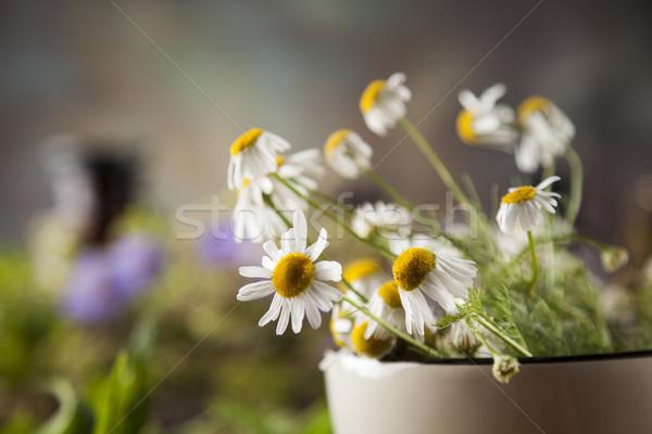 Otlar karpuzu çiçekler ahşap masa doğa Stok fotoğraf © JanPietruszka