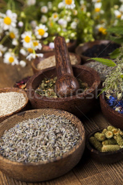 Natural remedy, mortar and herbs Stock photo © JanPietruszka