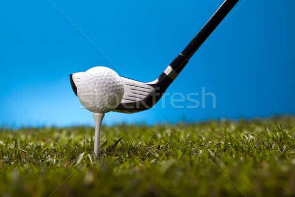 Golf ball on green meadow, driver   Stock photo © JanPietruszka