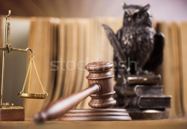 Legge gufo giudice martelletto giustizia martello Foto d'archivio © JanPietruszka