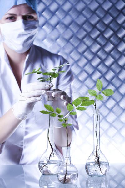 Stok fotoğraf: Laboratuvar · züccaciye · biyo · organik · modern · tıbbi