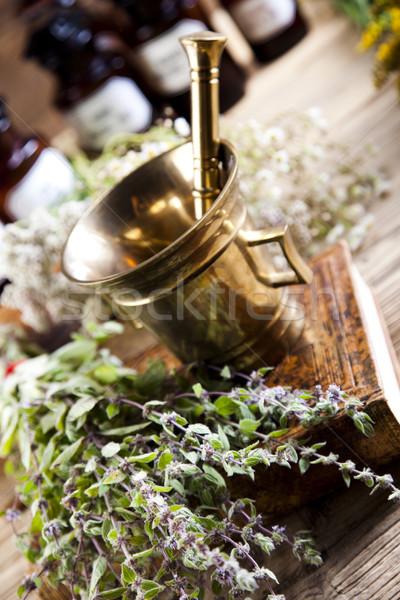 Herbal medicine, natural colorful tone Stock photo © JanPietruszka