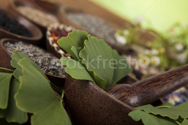 Fa természetes jóvátétel természet szépség gyógyszer Stock fotó © JanPietruszka