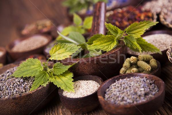 Stock photo: Natural remedy, mortar and herbs