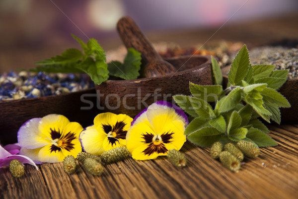 Mesa de madeira ervas natureza beleza Foto stock © JanPietruszka