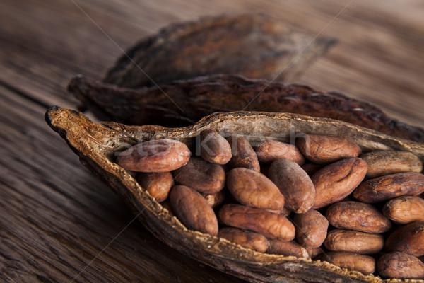 Cocoa pod on wooden table Stock photo © JanPietruszka
