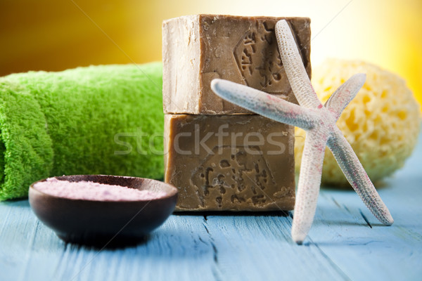Herbal salt and spa, fresh and organic concept Stock photo © JanPietruszka