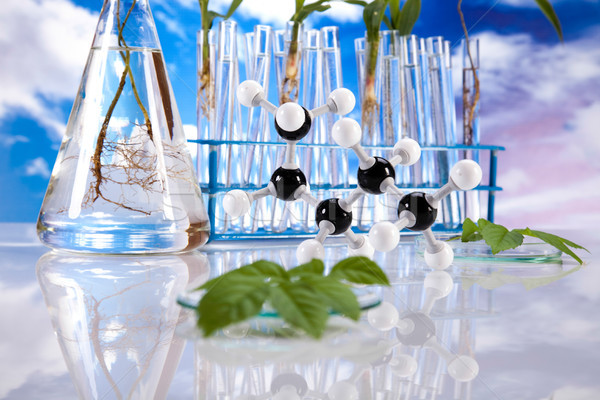 Biotechnology, Chemical laboratory glassware, bio organic modern Stock photo © JanPietruszka