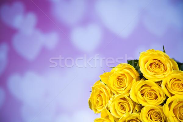 Naturelles fraîches roses saint valentin texture rose Photo stock © JanPietruszka