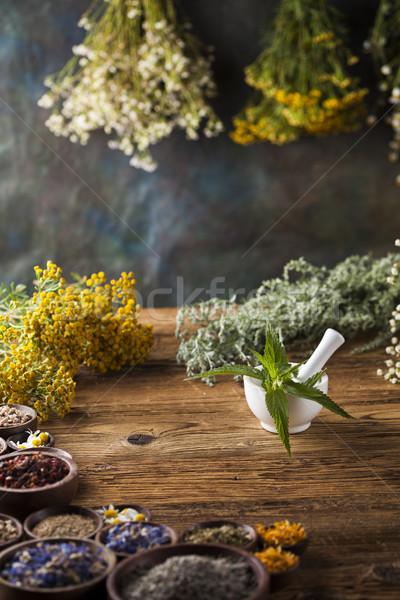 Fresco cura ervas Foto stock © JanPietruszka