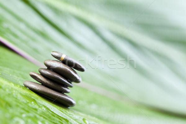Kiegyensúlyozott zen kövek varázslatos légkör csoport Stock fotó © JanPietruszka