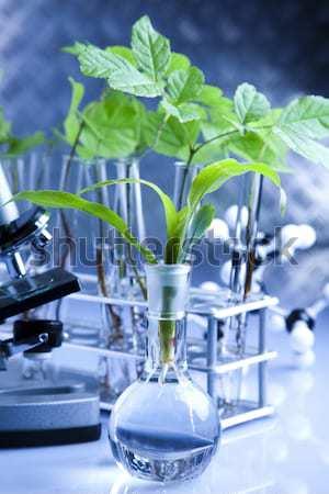 флора лаборатория природы медицина завода лаборатория Сток-фото © JanPietruszka