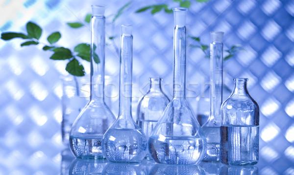 Ciencia experimento planta laboratorio médicos vidrio Foto stock © JanPietruszka