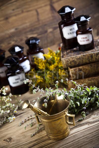 自然 医療 ハーブ 自然 美 薬 ストックフォト © JanPietruszka