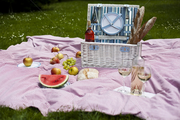 Piknik sepeti yeşil çim bahar çim elma Stok fotoğraf © JanPietruszka