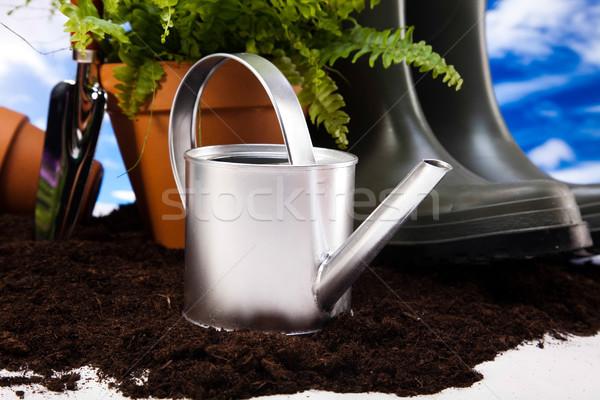 Flowers and garden tools on blue sky background Stock photo © JanPietruszka