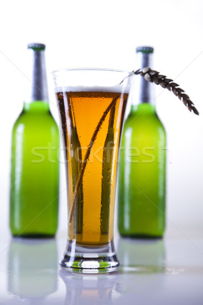 Cerveja brilhante vibrante álcool festa vidro Foto stock © JanPietruszka