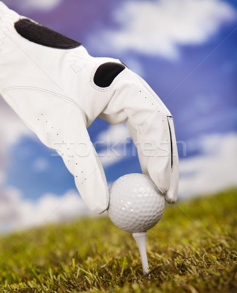 Golflabda golf klub naplemente gyep életstílus Stock fotó © JanPietruszka