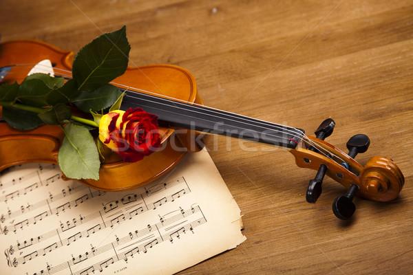 Foto stock: Rosas · vermelhas · violino · flor · amor · folha · vela