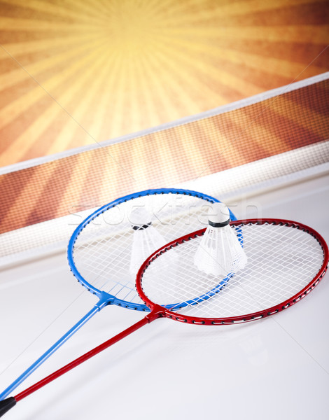 Badminton lata zabawy Pióro piłka Zdjęcia stock © JanPietruszka