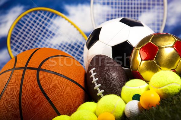 Grup spor malzemeleri doğal renkli spor futbol Stok fotoğraf © JanPietruszka