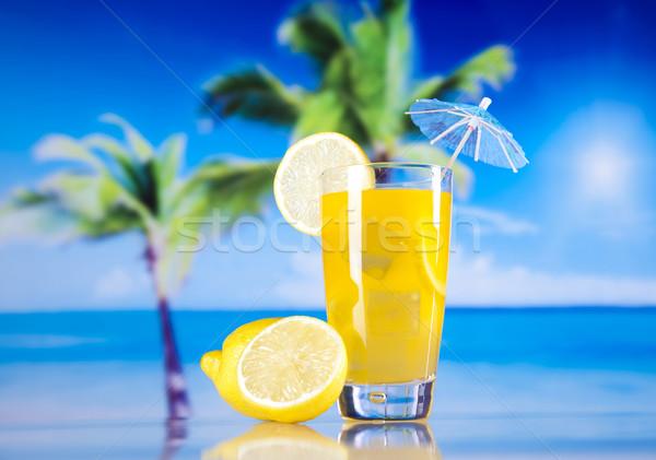 Egzotikus alkohol italok természetes színes étel Stock fotó © JanPietruszka