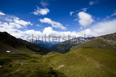 Alpler bahar doğal renkli çiçekler ağaç Stok fotoğraf © JanPietruszka