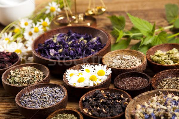 Natural medicine, natural colorful tone Stock photo © JanPietruszka
