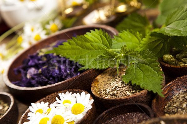 Medicine bottles and herbs, natural colorful tone Stock photo © JanPietruszka