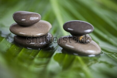 Stenen bamboe zen magisch atmosfeer groep Stockfoto © JanPietruszka
