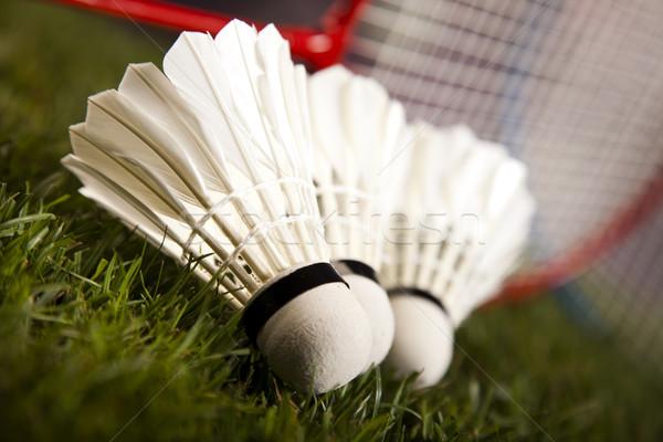 Badminton esportes futebol verão laranja Foto stock © JanPietruszka
