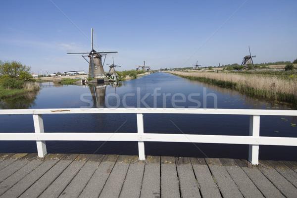 Windmill, Kinderdijk in netherlands Stock photo © JanPietruszka