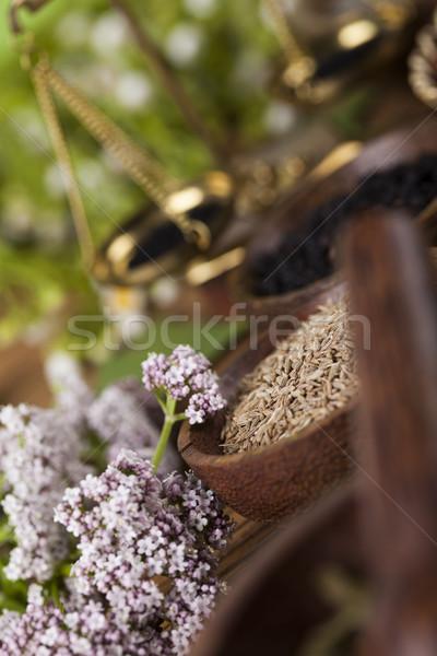 Doğal çare otlar doğa güzellik Stok fotoğraf © JanPietruszka