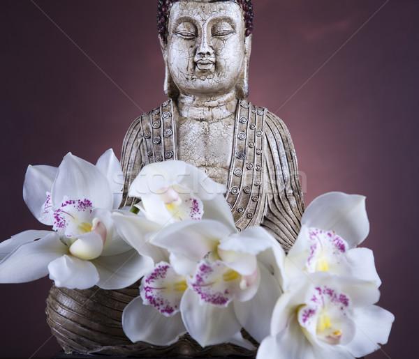 Buddha szobor orchidea virág arc nap Stock fotó © JanPietruszka