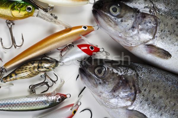 Pescaria naturalismo comida natureza rio voar Foto stock © JanPietruszka