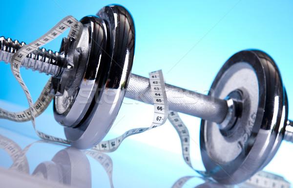Stock foto: Fitness · Fitnessstudio · Zug · Ausübung · Muskel · Platte