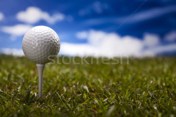 Piłeczki do golfa zielone łące wygaśnięcia trawnik życia Zdjęcia stock © JanPietruszka