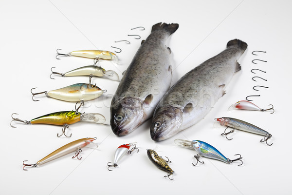 Fishing, saturated natural tone theme Stock photo © JanPietruszka